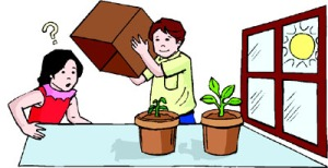 science-fair-projects-for-kids-growing-plants