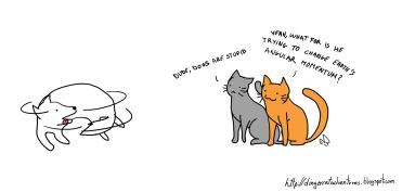 cat angular momentum