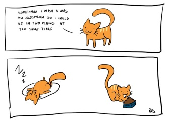 electron cat