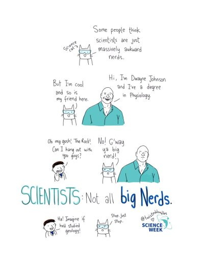science-cat-and-the-rock