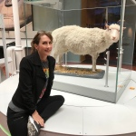 Hello Dolly! What a Little Lamb Taught Us About StemCells